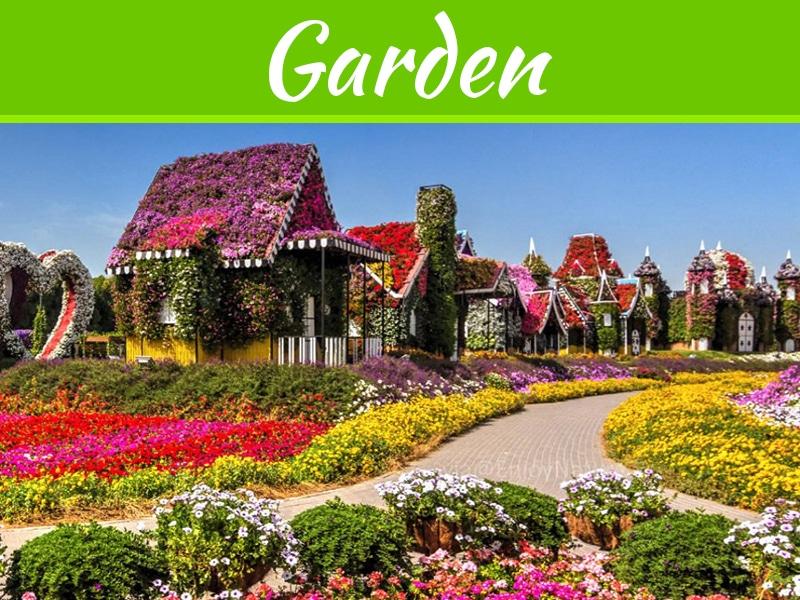 7 idées astucieuses pour embellir votre jardin