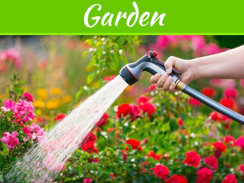 8 conseils pour conserver l'eau dans votre pelouse et votre jardin