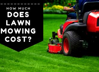 Combien coûte la tonte de la pelouse ?
