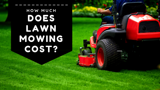 How Much Does Lawn Mowing Cost