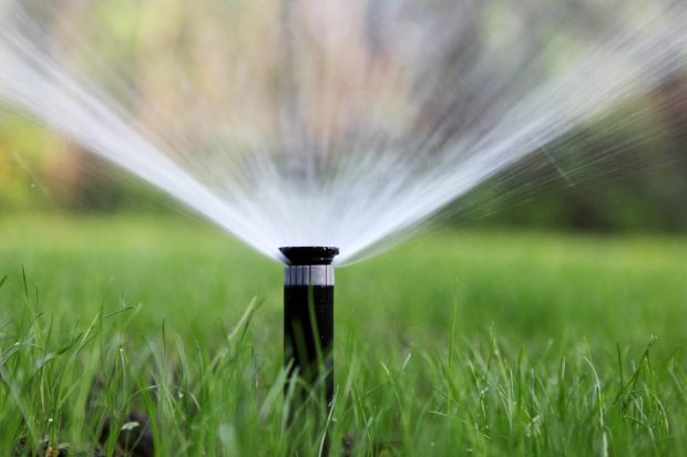 Identify The Best Time To Irrigate