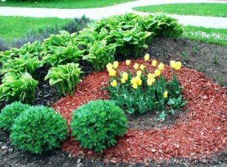 Les 8 principaux types de variétés de paillis pour le jardin