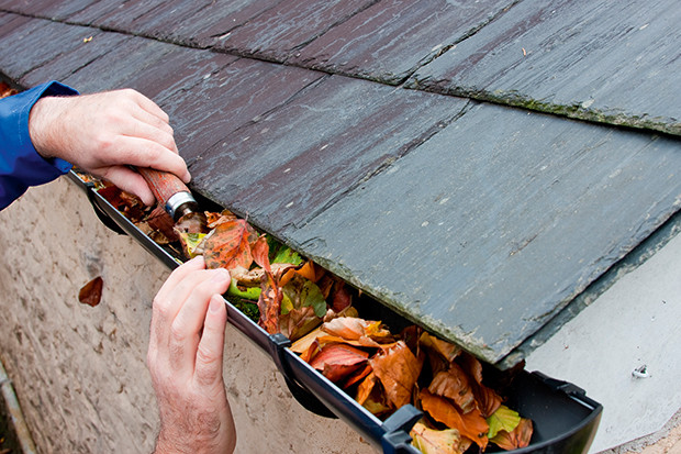 Gutters Cleaning
