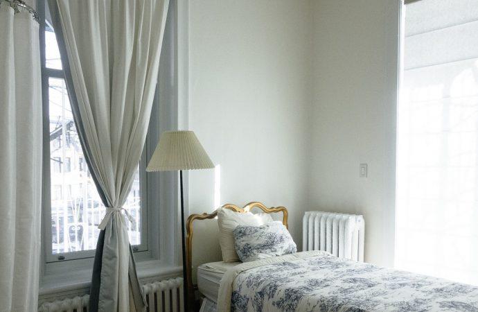 Punaises de lit à Lyon, pourquoi faire intervenir une entreprise de désinsectisation ?