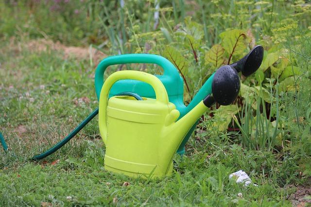 Comment choisir une pompe pour cuve d'eau de pluie?