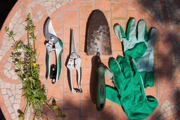 Meilleur guide de jardinage – Outils de jardinage et leurs utilisations – Partie I