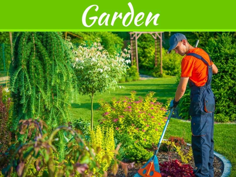 Conseils pour garder votre jardin en santé