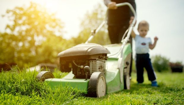 Lawn Mower Safety Training