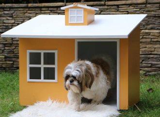 5 conseils pour garder les animaux domestiques hors du jardin
