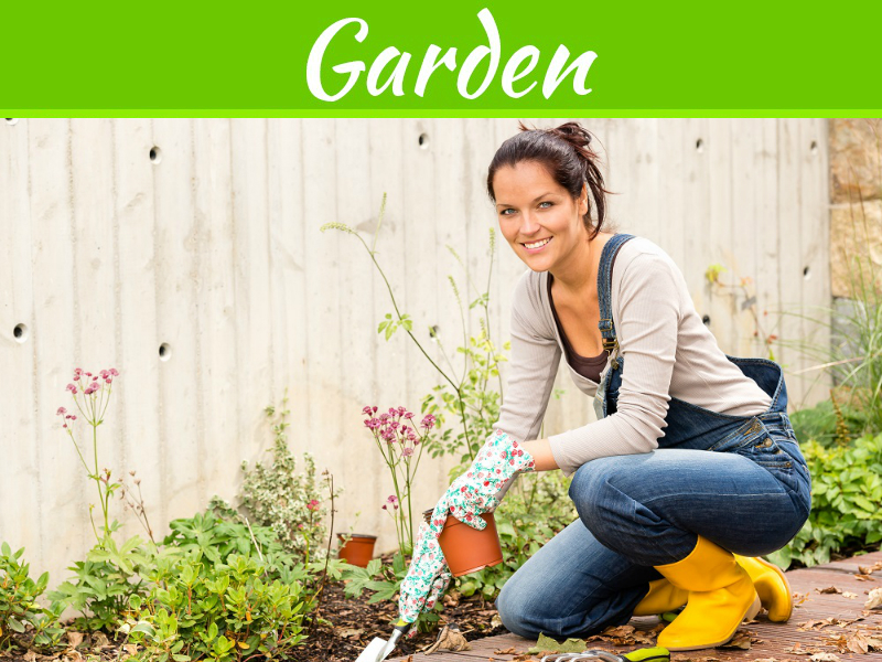4 conseils pour prendre soin de votre jardin